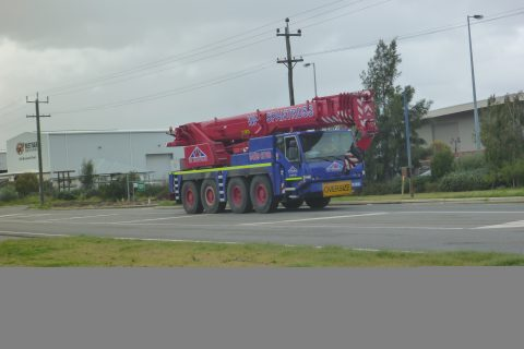 OUR BIG RED CRANE